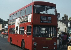 London Transport . DMS304 JGF304K . West Croydon Bus Station . 26th-August-1980 . (AndrewHA's) Tags: west bus croydon daimler fleetline parkroyal londonbus londontransport roundshaw route233 crg6 dms304 jgf304k