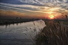 BRB Canal Sunset (Usman Hayat) Tags: pakistan way canal nikon awesome motor nikkor lahore hdr brb hayat islamabad usman 18105 naturepoetry d7000 absolutegoldenmasterpiece uhayat