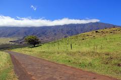 Southeastern Maui (Robert F. Carter Photography) Tags: mountains clouds landscape hawaii mainstreet solitude fences maui roads roadside blacktop lavarocks hawaiianislands mauihawaii mainroads hawaiianmountains onelaneroads hawaiianroads hawaiiroute31