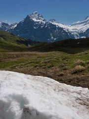 Small, far away... (Purple Plectrum) Tags: grindelwald bachalpsee