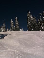 Big White 011 (Ronslibrarian) Tags: trees winter snow ski tree evergreen bigwhite evergreentrees 2011