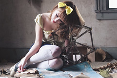 (yyellowbird) Tags: house selfportrait abandoned girl wisconsin toy lolita ferriswheel cari meccano