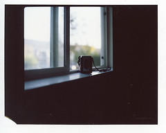 this little instant: good morning. (tumbleweed.in.eden) Tags: window vintage bokeh fujifilm windowsill oldcamera argus underexposure fp100c hasselroid clichesaturday thislittleinstant