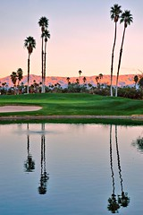 Palm Springs, California (PM Kelly) Tags: california sunset lake reflection tree green water golf psp pond day palmsprings palm clear springs palmtree rough pmkphoto