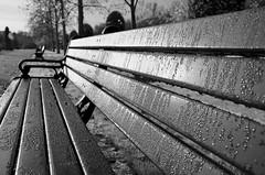 WINTER MORN (DESPITE STRAIGHT LINES) Tags: park winter england london bench landscape droplets seat dew regentspark wintermorning nikond7000 ilobsterit