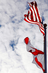 Very Blustery Day (bwcImages) Tags: cold alabama windy blustery ihatewinter coldcoldcold unitedstatesflag project365 veryblusteryday alabamaflag shuttersisters windywindywindy 2011yip stateofalabamaflag