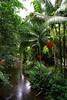72444_TADEU NASCIMENTO_MORRETES PARANA (Tadeu_Nascimento) Tags: paraná janelas vegetação morretes flôres tadeuonascimento