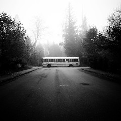 Redmond Bus (sparth) Tags: road seattle trees bw bus fog square blackwhite washington december foggy symmetry squareformat schoolbus washingtonstate iv ricoh sammamish carre 2011 grd bwsquare blackandwhitesquare ricohgrdiv grdiv