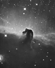 Horsehead Nebula (B33) HA+LUM (Terry Hancock www.downunderobservatory.com) Tags: county camera sky color monochrome wheel night dark stars photography mono pier backyard fotografie tech photos space shed science images off astro stephen observatory telescope filter terry orion astronomy imaging hancock alpha ccd universe f8 ic434 horsehead axis hydrogen paramount luminance osc wessling teleskop astronomie byo astronomers deepsky newaygo barnard33 guider starlightxpress Astrometrydotnet:status=solved qhy5 at10rc Astrometrydotnet:version=14400 at2ff mks4000 qhy9m gt110s wwwdownunderobservatorycom Astrometrydotnet:id=alpha20120192016647