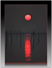 tra i pali - ***explore!*** (erman_53fotoclik) Tags: tramonto laguna sole pali rosso controluce chioggia riflesso mygearandme mygearandmepremium mygearandmebronze mygearandmesilver mygearandmegold flickrstruereflection3