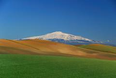 Etna - Sicily - Sicilia (Giuseppe Finocchiaro) Tags: blue sky snow verde green landscape volcano blu cielo neve sicily etna sicilia paesaggio vulcano