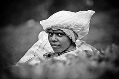 The tea picker (djamtala) Tags: india white black tea south tamil nadu munnar picker kerla blackwhitephotos