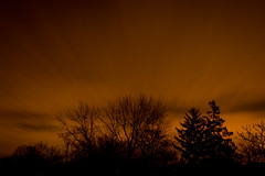 24/366 The Day Left (sameoldkev) Tags: trees winter sky orange silhouette night long exposure skies january jersey passing cluods