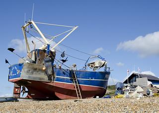 Hastings Beach Fleet
