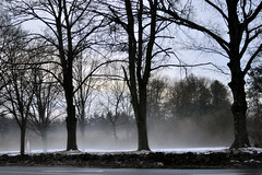 Mysterious Morning (KAM918) Tags: morning trees winter snow weather fog ma nikon melting massachusetts mysterious week4 evaporate dracut evaporating project52 d3100 ihtsw