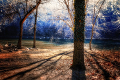 Winter Glade on the Shenandoah River (dbnunley) Tags: canon river harpersferry shendandoah 60d therewasntmuchcolorinthissoihadtojuiceitupalittle