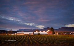 Biringer Farms, Arlington WA (Jon and Rach | Photography) Tags: winter light sunset sky field clouds arlington barn rural washington strawberry berries pacific northwest farm sony strawberries wa fullframe alpha maxxum 850 a minolta50mmf17