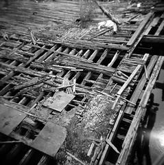 Planking (T-Terror) Tags: wood water boston mediumformat square boards d76 squareformat holga120s fallingapart fujineopan400 deteriorating epsonv500