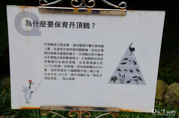 木柵動物園鳥園07.jpg