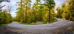 Watch Before Crossing (Kristina Quinones) Tags: road park new york travel trees mountain mountains tree green clouds forest state hiking trails upstate trail winding roads preserve minnewaska 500px ifttt kristinaquinones kristinaquinonesphotography