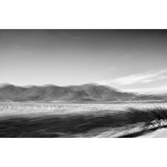B l u r s c a p e (creonte05) Tags: blackandwhite bw blur blancoynegro square landscape nikon paisaje explore curico 2016 cuadrado blurscape bconegro d7100 eduardomiranda