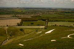 WHH-4 (liamworrall) Tags: england horse white hill oxfordshire