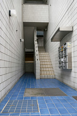 Tiles (mic00l) Tags: street automne canon eos tokyo day shot candid automn jp japon omotesando f40 6d 24105mm shibuyaku tkyto