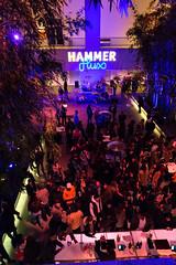 Flux Screening Series at the Hammer, February 3, 2016 (helloflux) Tags: california film hammer museum losangeles unitedstates flux short westwood screening musicvideo billywildertheater screeningseries