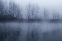 dangerous game (paolo paccagnella) Tags: fog photo dangerous flickr foto place paolo kind nebbia veneto canonequipment paccagnella phpph phpphotographycom