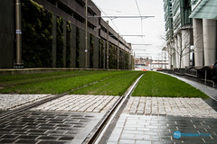 untitled shoot-008-3.jpg (Sidekick Photo) Tags: birmingham lawn tram tramlines businessdistrict lawm instameet