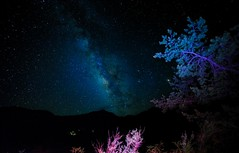 Chisos Mountain late night milky way