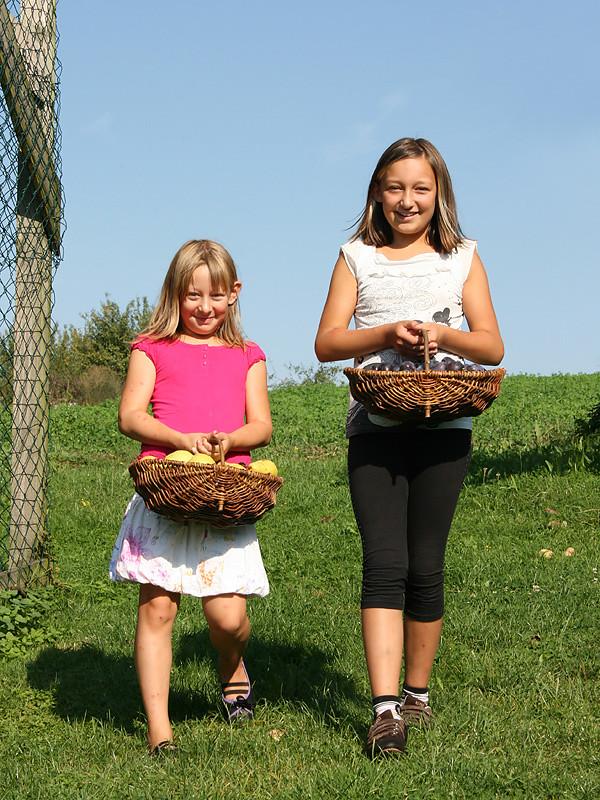 Kinder mit Obstkörben