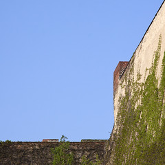 . (barbera*) Tags: sky berlin wall vines negativespace chimneys barbera guessedberlin gwbatineb 4781a