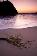 Pfeiffer beach / Big Sur (kviipale) Tags: california sunset beach canon bigsur roadtrip 5d pfeifferbeach