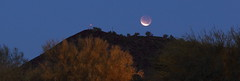 Lunar Eclipse of December 10 2011 Panoramic (Radical Retinoscopy) Tags: morning light arizona moon mountain southwest tree phoenix set night sunrise photography star eclipse photo december desert 10 low hill union north astro deer hills mesquite astrophotography valley marker total beacon lunar moonset astrophoto dvt 2011 kdvt unionhills