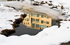Speglun í andapolli í Hafnarfirði. (icecold46) Tags: snow reflection water iceland hafnarfjörður snjór vatn speglun
