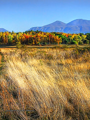 SOME COLORS OF AUTUMN (Saimir.Kumi) Tags: november blue autumn trees red sky sun mountain lake green colors grass yellow finepix fujifilm rays albania hdr tirana 2011 3xp s9600