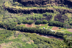 Wilderness Farm on the Waimea River (Robert Fred) Tags: landscape hawaii landscapes rivers kauai waimea farms wilderness roadside waimeacanyon seclusion lavarocks hawaiianislands kauaihawaii waimeariver hawaiianrivers waimearivercanyon secludedhomes hawaiianwilderness secludedfarms hawaiianfarms rivers11241