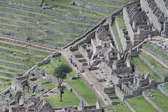 View on Machu Picchu