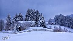 Winter Scene (»DaLMaTiNo«) Tags: schnee winter panorama snow alps st fog schweiz switzerland suisse swiss nieve sneeuw scene che neige alpen betlehem gallen nix kar alpe ch sne presepe sankt hohe śnieg gall snijeg nativityscene presépio belén weihnachtskrippe pessebre sanktgallen stgall kerststal снег 2011 sníh presepi julekrybbe julkrubba jaslice zăpadă eggersriet jesličky dalmatino fünfländerblick kripo neĝo crèchedenoël jouluseimi praesepe ozdoba キリストの降誕 krëppchen szopkabożonarodzeniowa 5länderblick φάτνητησγεννήσεωσ вертепнаядрама шопка guanatal prakartėlė krippsche kraounedeleg belénescenadelnacimientodejesús presebbio betlèm prisepiu betlehemozdoba