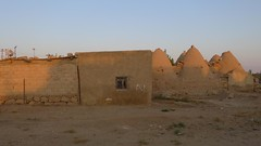 Harran and its beehive houses (10b travelling) Tags: house home ctb architecture turkey asia europa europe village turkiye border sanliurfa urfa middleeast structure ten syria beehive carsten anatolia brink turchia harran turkei 10b beehivehouse cmtb tenbrink carstentenbrink iptcbasic altnbaak
