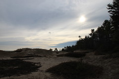 Cold day on the beach (ET's Photo Home) Tags: trees sky sun beach nature wisconsin clouds sand walk hike trail pines spruce kohlerandreastatepark