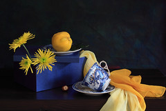 The Sun Is My God (panga_ua) Tags: blue stilllife sun art yellow composition canon spectacular golden artwork darkness artistic availablelight ukraine poetic creation imagination natalie arrangement hazelnut tabletop gettyimages quince bluebox saucers bodegon naturemorte panga artisticphotography rivne naturamorta conscious bluedragon artphotography subconscious sharpfocus yellowchrysanthemums paintedcup yellowscarf playinginthesun  nataliepanga thesunismygod