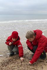 Christmas (Anders Sellin) Tags: christmas strand nationalpark skne jul 2011 stenshuvud ginordicjan12