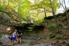 (Angie Antimatter) Tags: autumn trees dog tree fall dogs nature leaves waterfall louisiana hiking pitbull trail boxer hiker doberman swimminghole