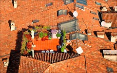 Verona : Living on the roof : Altana - EXPLORE - #318 (Pantchoa) Tags: italy italia terrace terrasse file roofs tiles verona terraza toits techos tuiles vrone altana capturenx nikond90nikkor1685mm viewnx2 f3556nikonpassionraw