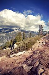 Yosemite (hinterland photo) Tags: trees sky mountain beauty clouds outdoors rocks yosemitenationalpark glacierpoint hinterlandphoto