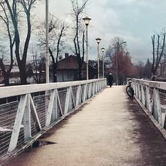 Solitary Woman on Bridge (Tanjica Perovic) Tags: street bridge trees houses winter bicycle puddle person town crossing serbia quay lamps distance treealley srbija floodbarrier pirot kej pirotskikej ljubavnimost pirotsrbija fotografijepirota barrieragainstflooding svetozarmisirlic floodingprotection