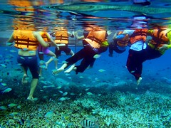 Underwater scene, Tourists swimming in the sea with life jackets, Tioman Islands (Far Out Photography) Tags: ocean travel sea summer vacation people holiday fish seascape nature water up coral contrast swimming swim outdoors island scenery paradise day underwater view outdoor scenic peaceful scene calm exotic malaysia tropical unusual island up tropical close fun close family having coral vacation legs underwater tioman