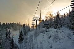 Back Up (4oClock) Tags: trees sunset people orange white snow oslo norway fun snowboarding evening december skiing silhouettes panasonic entertainment lateafternoon tryvann settingsun 2011 vinterpark tz6